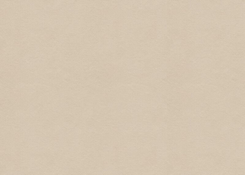 Sonora Ivory Leather Swatch
