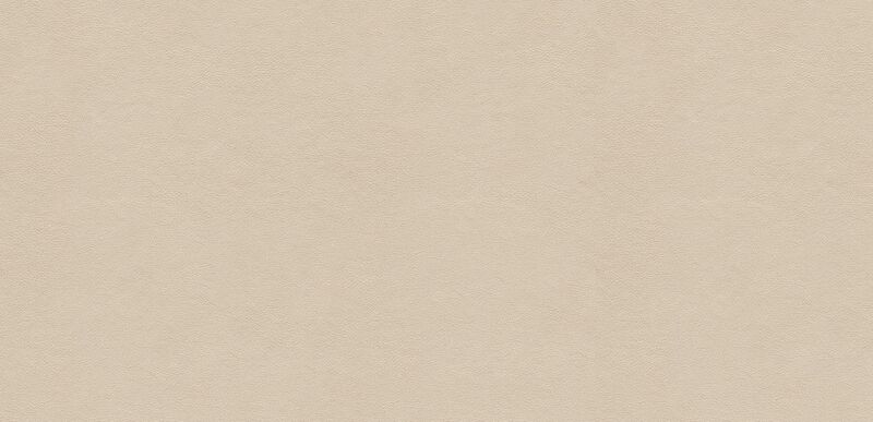 Sonora Ivory Swatch