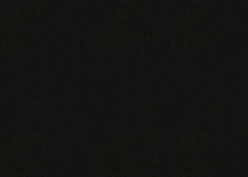 Anson Black Leather Swatch