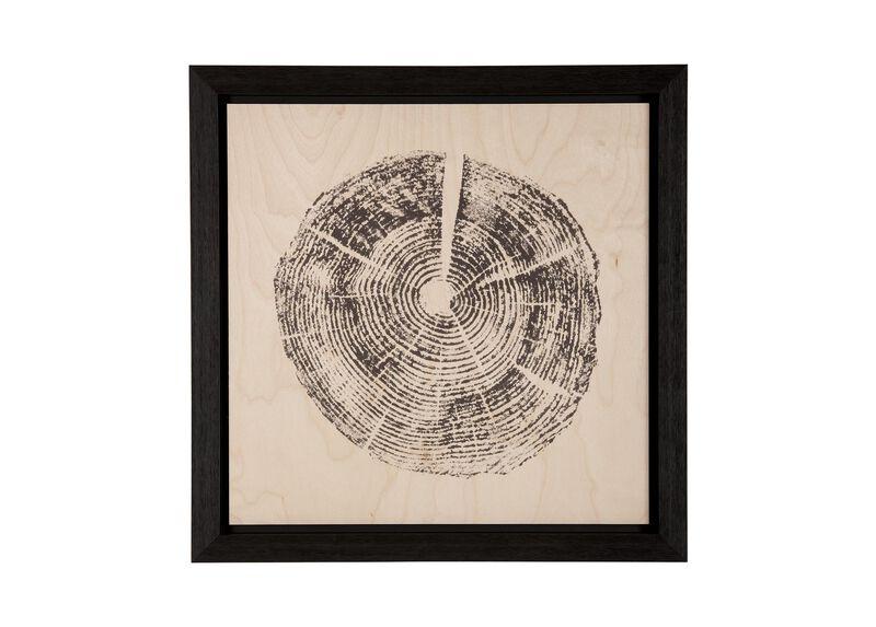 Wood Slice II ,  , large_gray