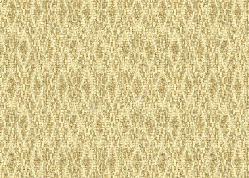Macy Champagne Fabric by the Yard