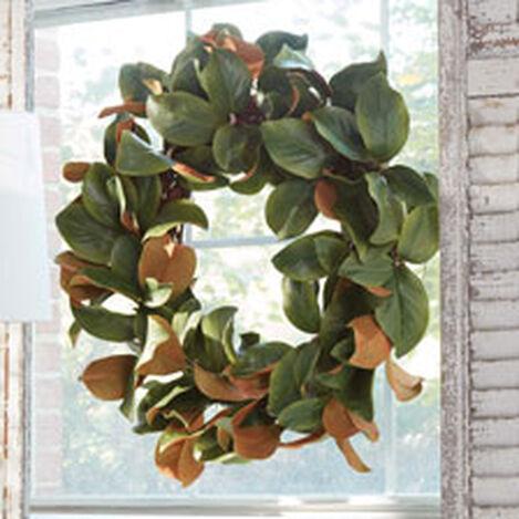 "30"" Green Magnolia Leaf Wreath Product Tile Hover Image 442235"