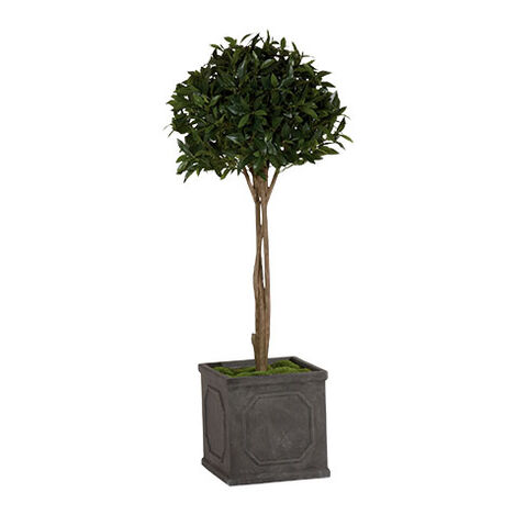 Single Bayleaf Ball Topiary ,  , large