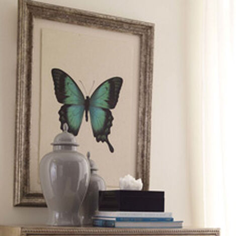 Butterfly Study I ,  , hover_image