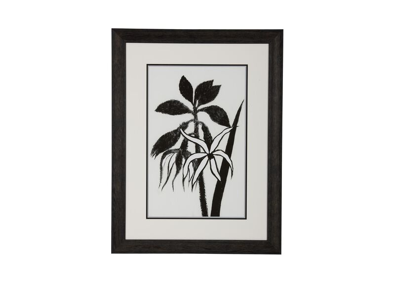 Hubbard Flowers II