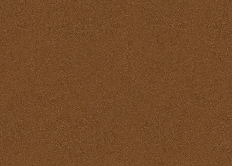 Omni Light-Brown Leather Swatch