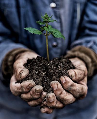 Environmental Responsibility & Stewardship
