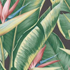 Pink Arcadia Banana Leaf Wallpaper