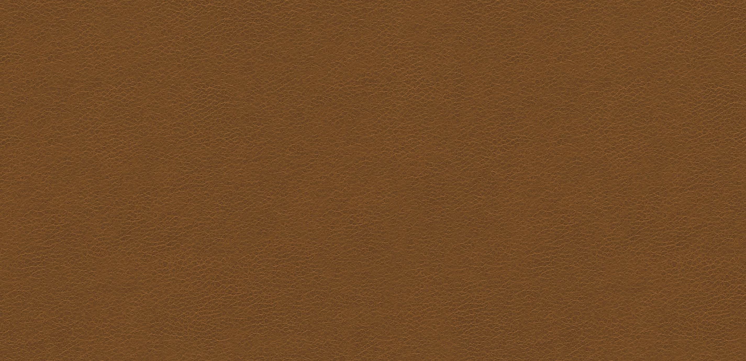 Omni Light Brown Leather Swatch - Ethan Allen | Ethan Allen