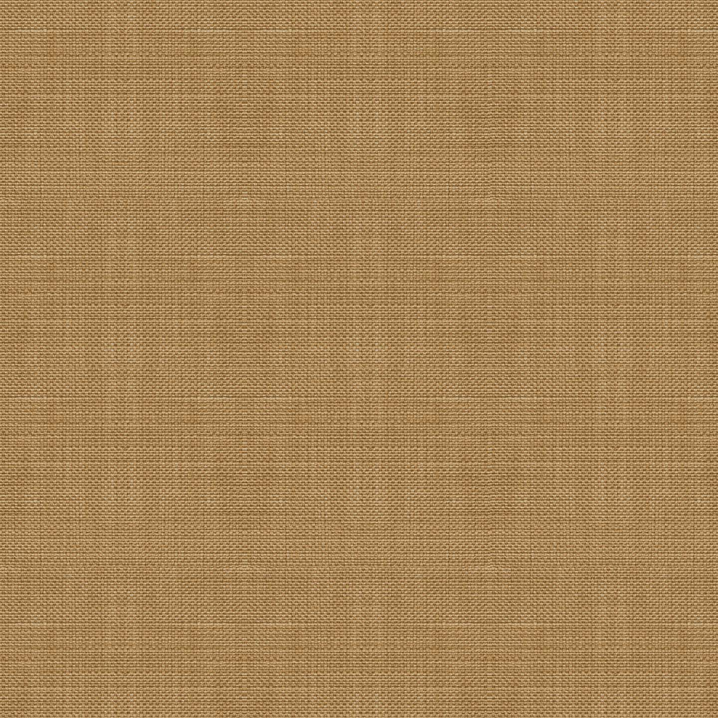 Springer Honey Fabric by the Yard ,  , large