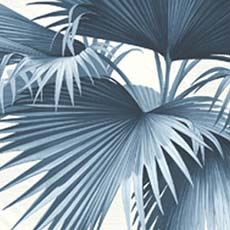 Blue Endless Summer Palm Wallpaper