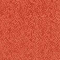 Zola Coral (80618),high performance Zola Fabric