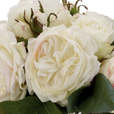 White Roses in Julep Cup