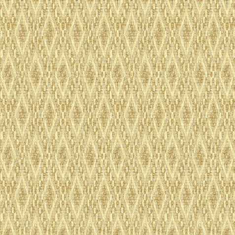 Macy Champagne Fabric by the Yard Product Thumbnail